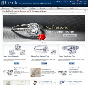 List of Engagement Rings from BlueNile